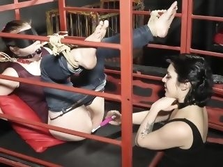 bdsm Extreme Tickling Torture for Ann Full Version bondage brunette