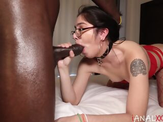 amateur Shes Taking it Anal anal big cock